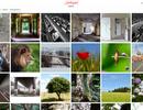 Fototreff Farbspiel: Installation und Einrichtung der Galerie-Software Chevereto